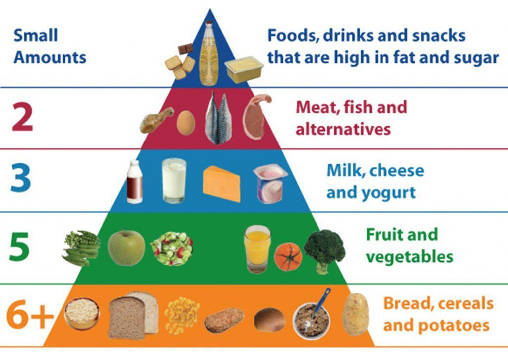 This Diet High In Carbohydrates Has The Effect Of Chronically Elevating Blood Sugar Levels It Requires That People Who Eat Way Constantly Be
